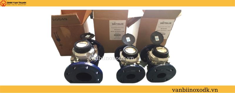 Đồng hồ nước sensus DN50 01