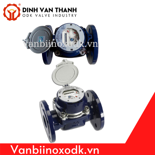 Đồng hồ nước sensus DN80